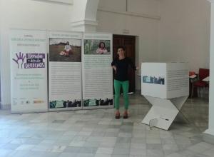 Exposicipon Fotogáfica DDD _ Hogar Virgen de los Reyes Sevilla (8)